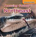 Amazing Snakes of the Northeast