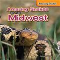 Amazing Snakes of the Midwest