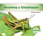Becoming a Grasshopper
